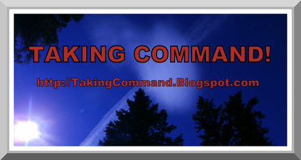 TAKING COMMAND - Douglas E. Castle